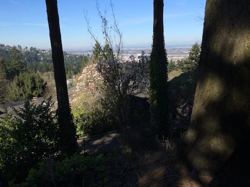 pdx hill walk 3:15 2