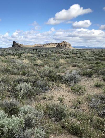 Trip to the Oregon Desert | Ann Williamson